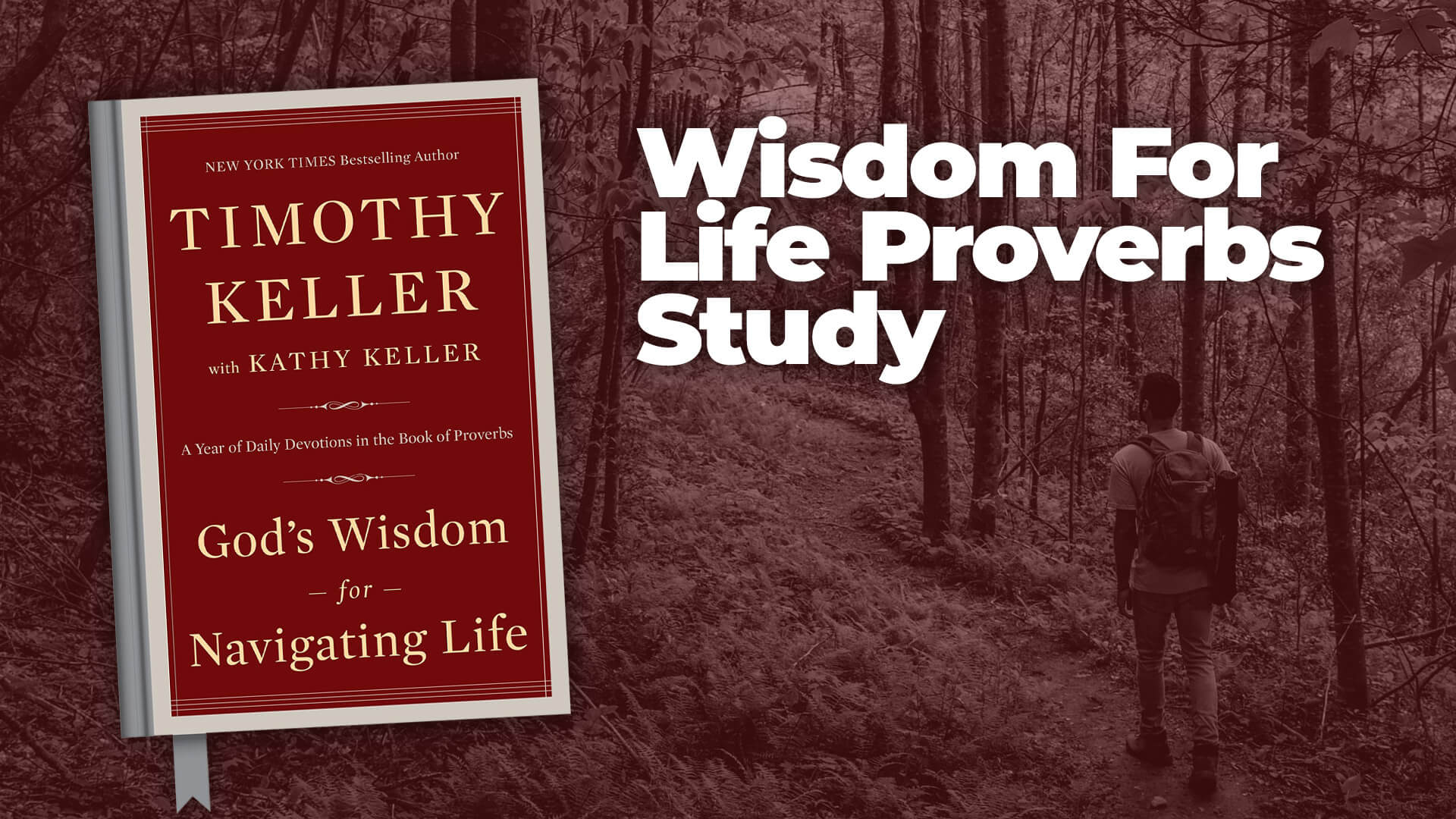 Wisdom for Life Proverbs Study
