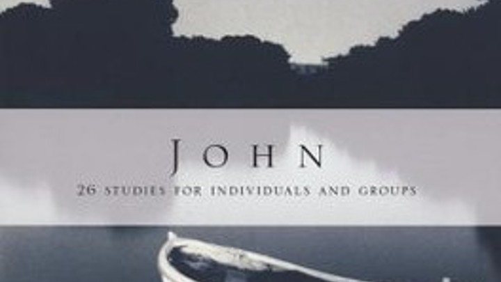 Women's Study of John by NT Wright
